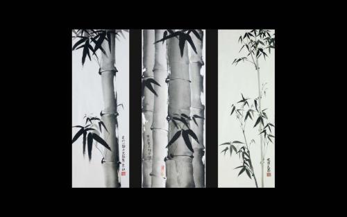 Bambus am Morgen